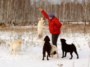 Зимняя прогулка 7 января 2012