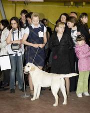 Региональная выставка. г. Миасс. 6 мая 2012 г.